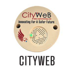CITYWEB copy